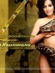 Anita Hassanandani Nude - NudeDesiActress.com
